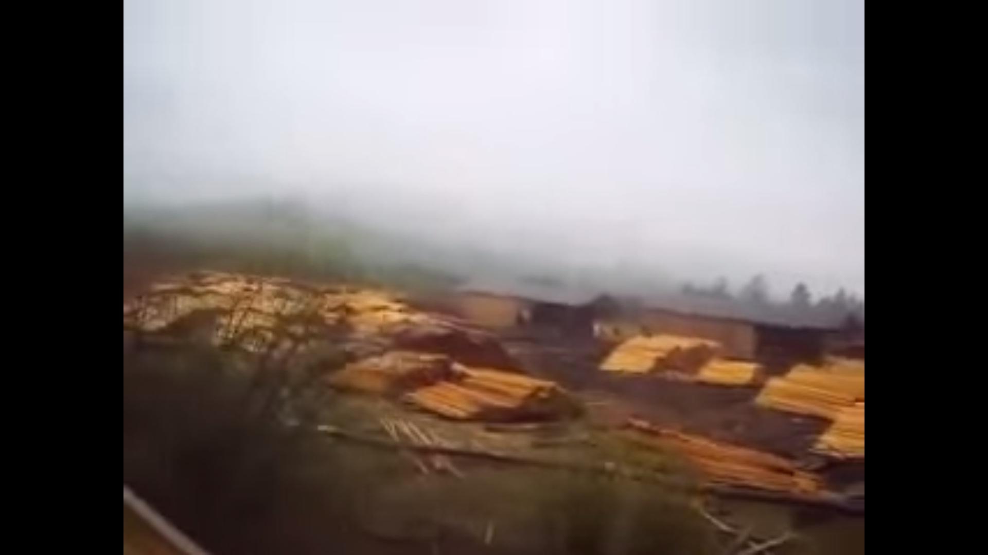 """Русские в шоке, возмущению нету границ! Китай """"отжал"""" у них Сибирь и беспощадно вырубает там лес (ВИДЕО)"""