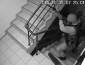 """СРОЧНО! Появились видео, как проходили обыски в офисе партии """"УКРОП"""""""