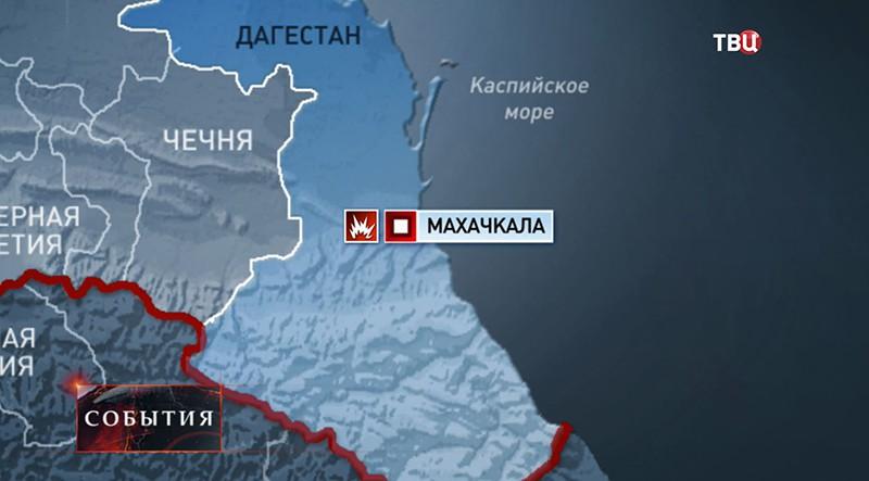 В оккупированном РФ Крыму новый карантин. Обнаружена болезнь Ньюкасла у птиц - Цензор.НЕТ 34