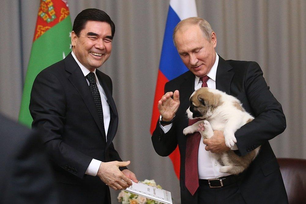 Президент Туркменистана подарил Путину щенка, который сразу же обделал главу Кремля (ВИДЕО)