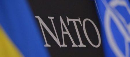 Ми партнери України: в НАТО поставили Угорщину на місце