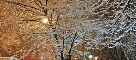 pogoda-na-13-nojabrja-ukraintsev-predupredili-o-meteli-foto-tvcru_rect_42f432854bec93d0481212799040c90d