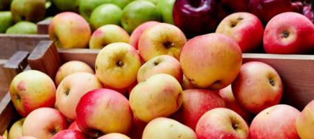 В Украине стремительно выросли цены на яблока