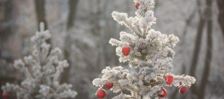 Укргидрометцентр рассказал, что ждет украинцев на Рождество