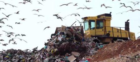 Черкасский мусор заинтересовал инвесторов из Бахрейна
