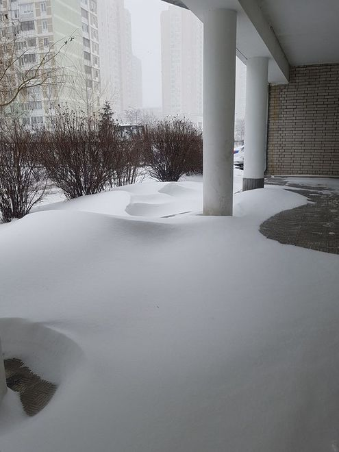 Снегопад парализовал Киев. Город стоит в пробках (ФОТО)
