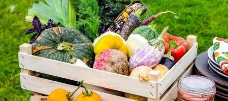 В Украина наблюдается тенденция роста цен на фермерскую продукцию