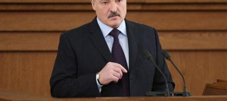Взрыв в сети: Лукашенко назвал Путина - петухом (ВИДЕО)