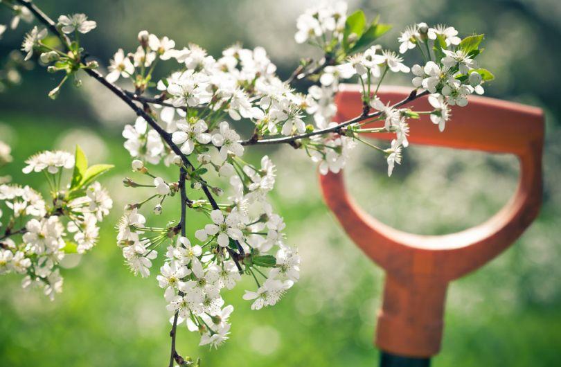 """""""Весна іде - тепло несе"""" - потепление в Украине, чего ждать на Пасху"""