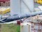 Впервые за последние 40 лет был убит синий кит (ШОКИРУЮЩЕЕ ФОТО)