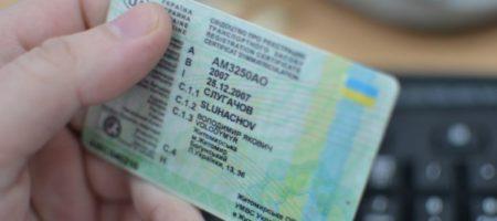Депутаты ВР готовят ноу-хау: в Украине водителям могут разрешить ездить без прав - подробности