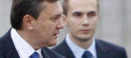 Негодование в сети и не только: украинцы в шоке от информации, что Янукович возвращаться в политику с новой партией