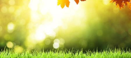 """""""Лето немного задержится осенью!"""" - синоптики дали прогноз на начало осени"""