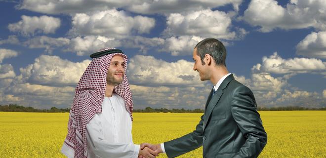 """Известный агрохолдинг """"Мрия"""" официально перешел в собственность новых владельцев"""