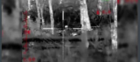 Силы ООС проверили в действии новое вооружение ВСУ сумев уничтожить снайпера боевиков - у окупанта не было шансов выжить (ВИДЕО)