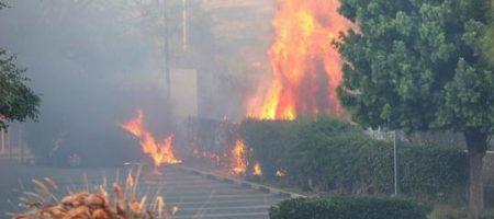 Элитный район Калифорнии пылает: горят особняки знаменитостей (КАДРЫ)