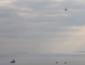 Россия после тарана украинского баркаса, подняла в воздух всю боевую авиацию, ситуация крайне напряженная (ВИДЕО)