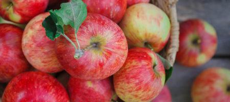 Медики назвали какой фрукт максимально полезный и его нужно употреблять каждый день