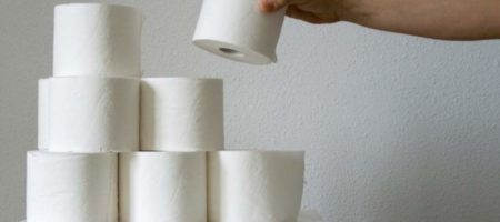 Немецкие экологи призывают отказаться от туалетной бумаги