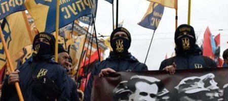 "Госдеп США назвал ""С14"" и ""Нацкорпус"" - групами ненависти"