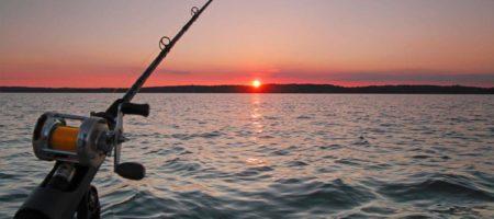 Опубликован перечень водойм Киевщины, на которых уже можно ловить рыбу