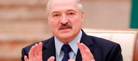 Лукашенко заявил, кто его фаворит в президентской гонке Украины