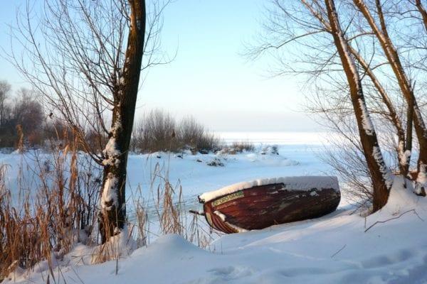 Погода сошла с ума: под Бердичевом в разгар лета выпал снег из-за чего случились массовые ДТП (ВИДЕО)