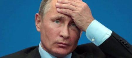 В сети карикатурой высмеяли реакцию Путина на протесты в Грузии