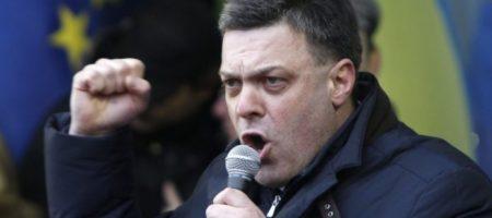Националисты назвали, кто возглавит их на внеочередных выборах в парламент
