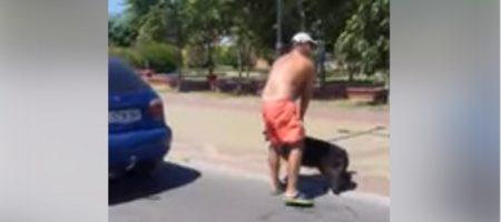 Нелюди в Кирилловке привязали собаку к машине, и тащили пока животное не погибло (ВИДЕО 18+)