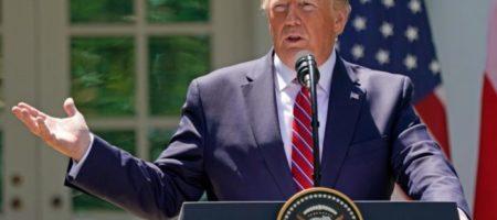 Дональд Трамп пригласил Зеленского с визитом в Белый дом