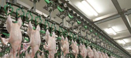 Украина договорилась я Японией о продаже мяса птицы