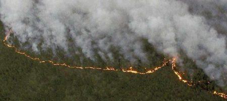 Мир в шоке: сибиряки на коленях просят помощи пока пожарные тушат озера! Вся помощь властей бубны для ритуальных заклинаний (ВИДЕО)