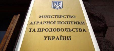 В новом Кабмине может не быть профильного аграрного министерства - Офис президента