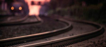 В Житомире школьница пытаясь спасти собаку попала под поезд