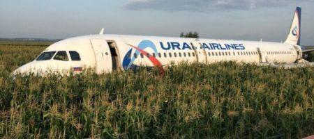 Растет количество пострадавших в результате аварийной посадки самолета в Подмосковье