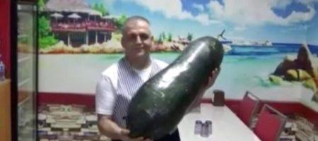 Турку удалось вырастить огурец весом 21 килограмм