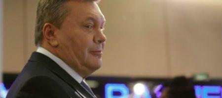 Беглый президент Янукович возвращается в Украину: первые подробности