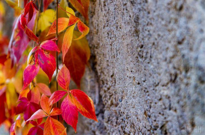 Еще лето или уже осень? Синоптики опубликовали свежий прогноз погоды