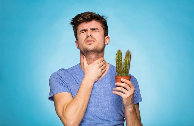 Боль в горле: причины, симптомы, лечение