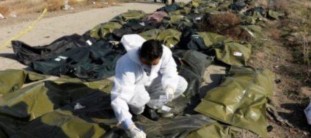 В МАУ рассказали, когда в «Борисполь» доставят тела погибших украинцев