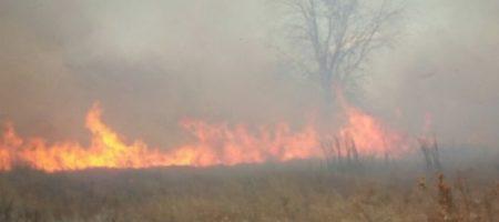 Под Киевом вспыхнул крупный пожар: рядом поселок и электростанция. ВИДЕО