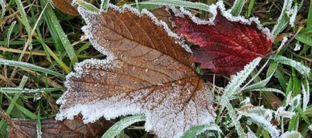 Морозы будут даже днем: синоптик удивил прогнозом на весну