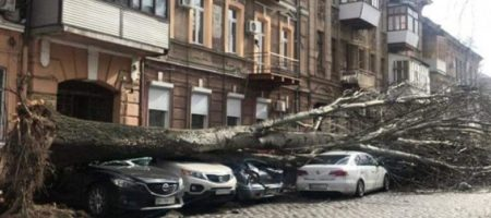 Бушующий ураган в Одессе забрал жизнь 60-летней женщины. ФОТО. ВИДЕО