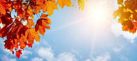 В Украину идет рекордное потепление: синоптики назвали дату