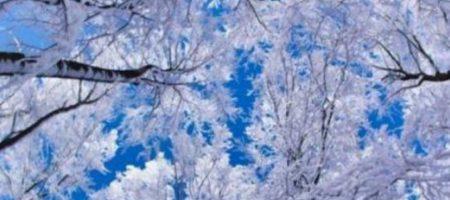 Минус 10 и снег: в Украину пришла зима. ФОТО