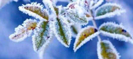 Ударит мороз: синоптики дали прогноз на конец марта