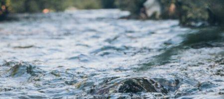 Под Одессой поймали гигантскую рыбу: ФОТО трофея