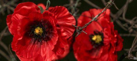 День памяти и примирения: история памятной даты