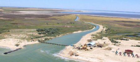 Из российских вод Азовского моря в Молочный лиман зашла рыба по 8-12 кг. ВИДЕО